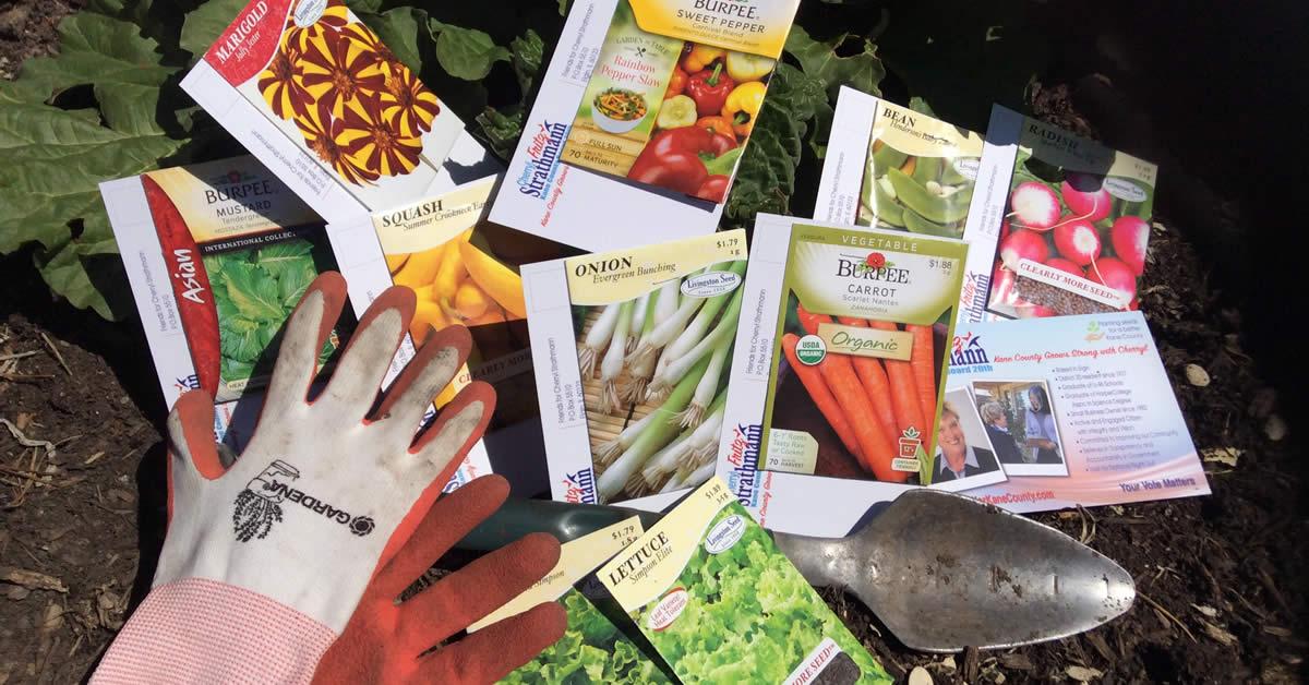 Cherryl Strathmann planting seeds kane county