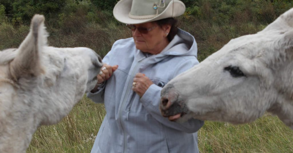 Janice Bennett and Donkeys